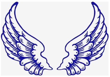 假如我有一双翅膀作文