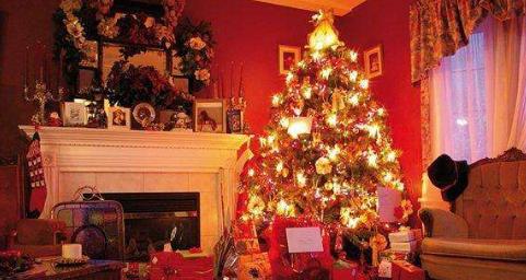 公司圣诞节活动programme