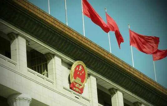 2020疫情后学习两会重要精神体会中国制度自信心得