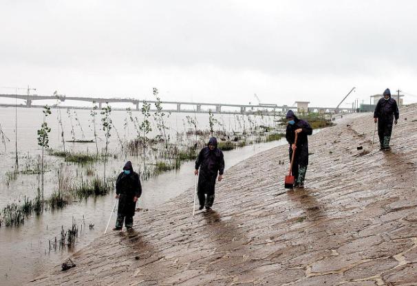 2020年防汛抗旱工作总结