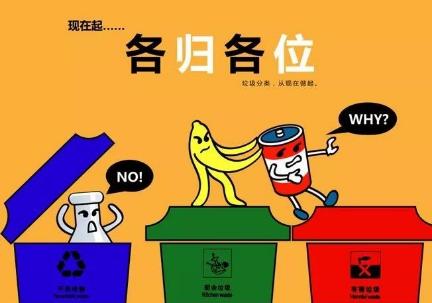 垃圾投放时,应该()。
