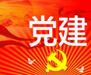 党委党建主体责任问题
