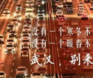 疫情下的中国作文