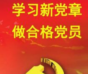 党组织书记抓党建工作述职心得三篇