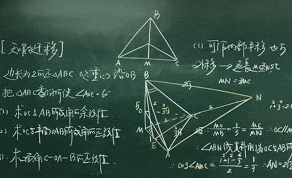 2019年最新初中数学教师年度考核个人述职报告