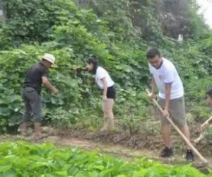 农村党支部建设存在的问题及对策三篇