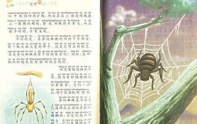 最新昆虫记圣甲虫读后感