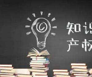 关于知识产权学习心得范文