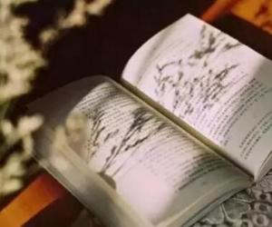 《唤醒心中的巨人》读后感:仰望教育星空,收获书香人生